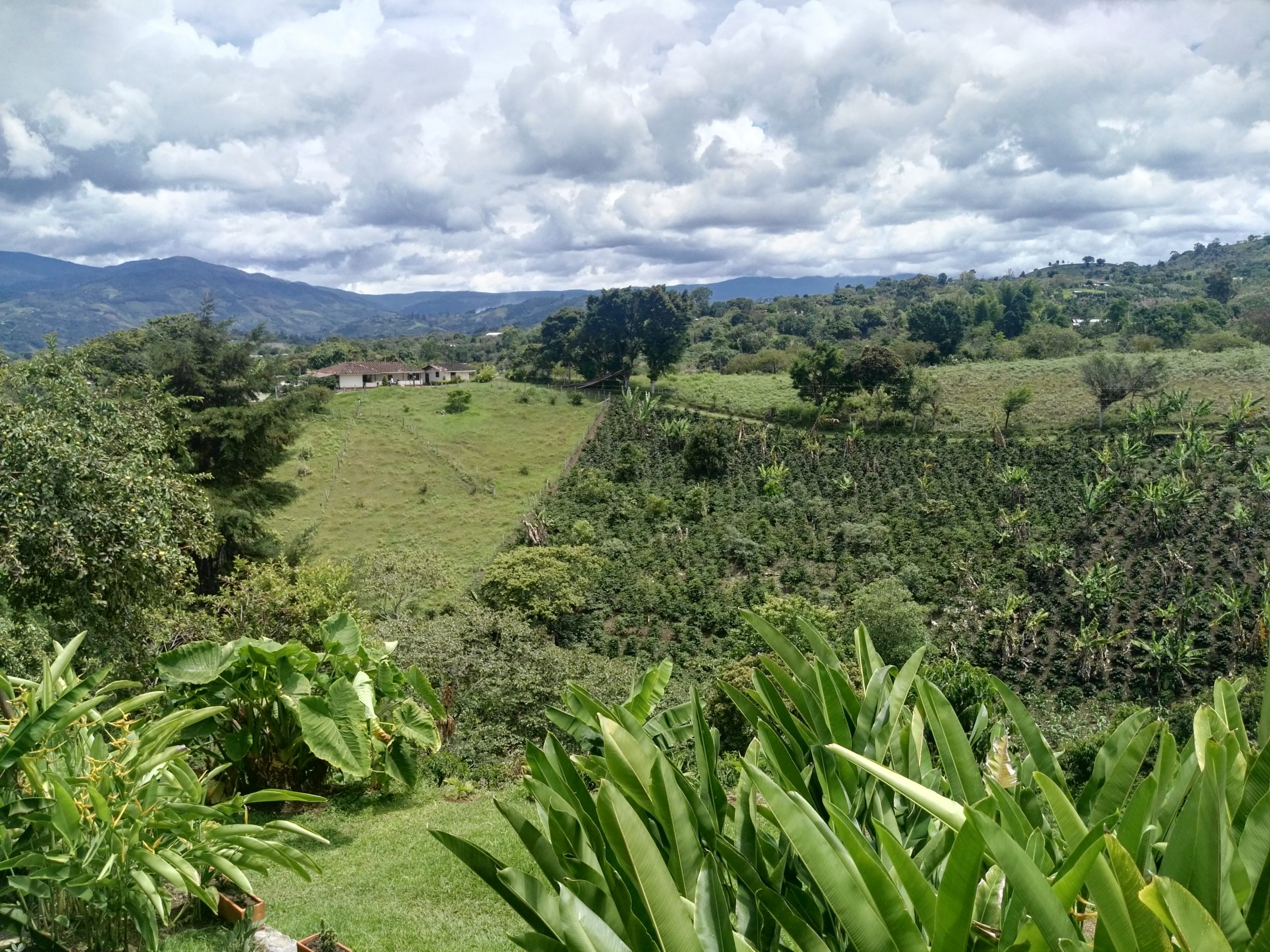 Kolumbien – Liebe auf den ersten Blick